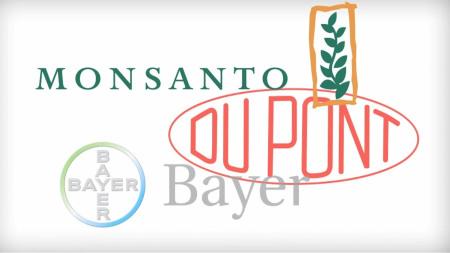 monsanto-bayer-dupont-merger-us-62-billion